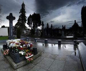 Michael Collins Grave